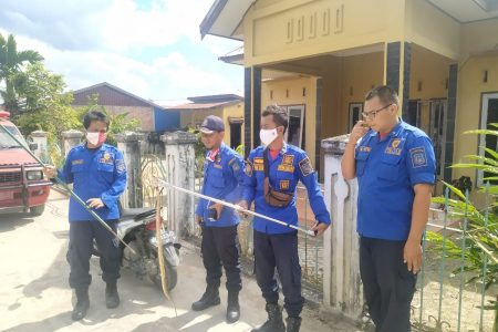 Evakuasi Ular Jl. Kelapa Gading