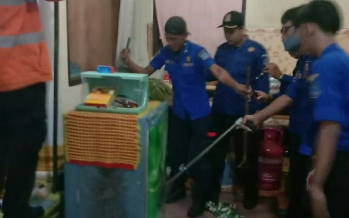 Evakuasi Ular Kobra BTN Pengabuan Permai