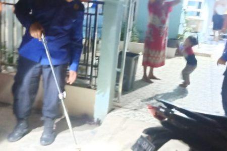 Evakuasi Ular di Jl. siswa Ujung Rt. 02