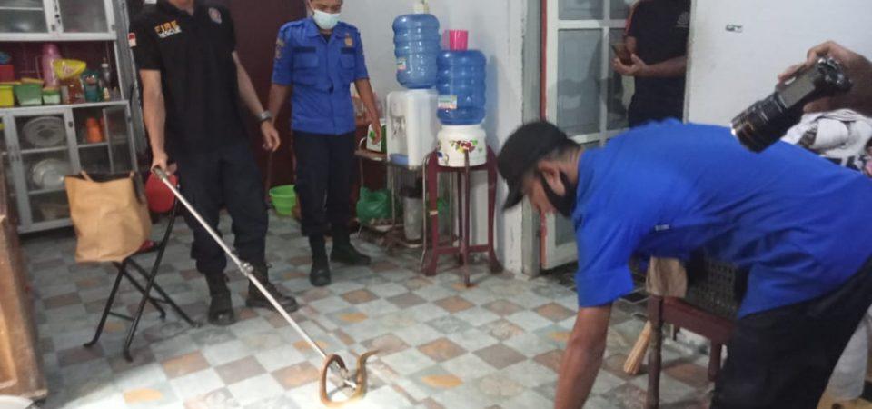 Evakuasi Ular di Komplek BTN Pengabuan Permai RT.20