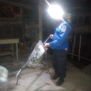 Evakuasi Ular di Jl. Piere Tendean Rt.05