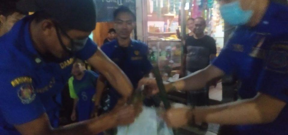 Evakuasi Ular di Jl. Harapan Ujung Rt.12